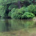 New Aquacize Program at Lake Boon