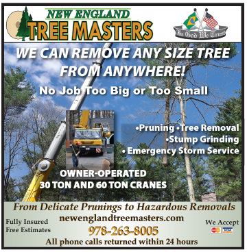 This image has an empty alt attribute; its file name is TreeMasters070914online.jpg