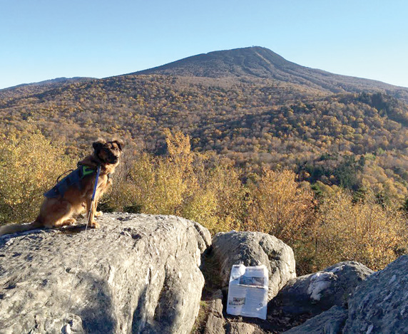 Stow resident Abby Hastings enjoys the view of Pico Peak from Deer Leap rock in Vermont. The Stow Independent almost blew away but we got the picture!